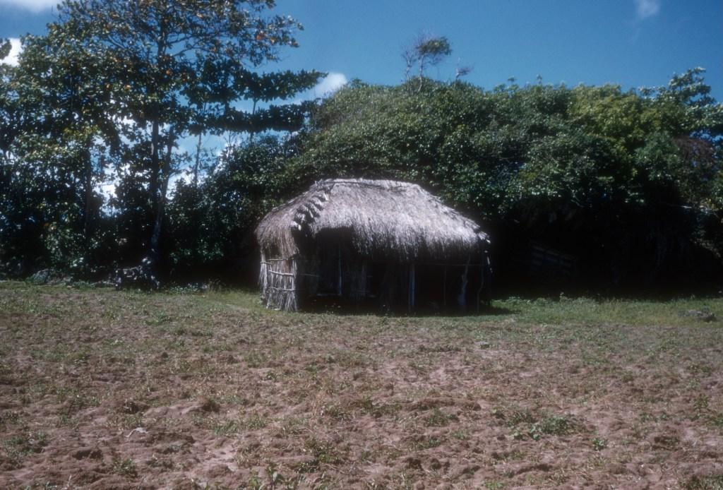 """Grass shack along beach road to San Juan""<br> Wesley Whiteside - 1950's"