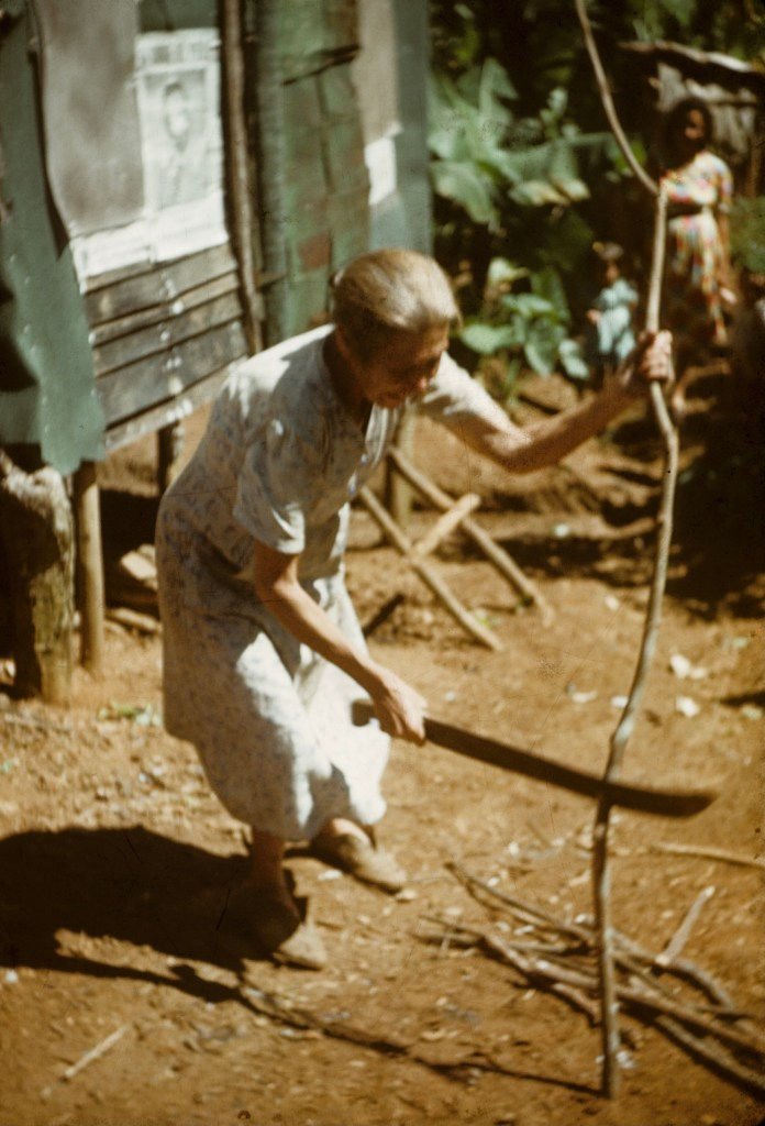 """Woman cutting firewood""<br>Wilbur Nachtigall - ca 1949"